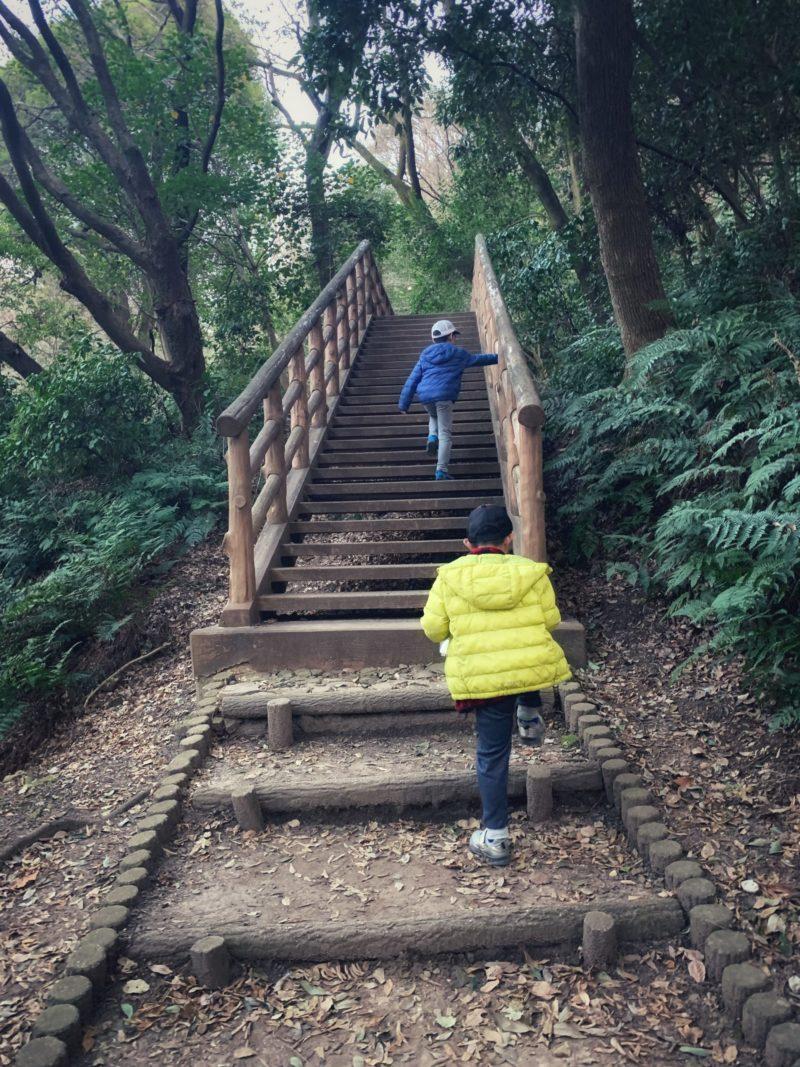 カブトムシを持って階段を上がる子ども