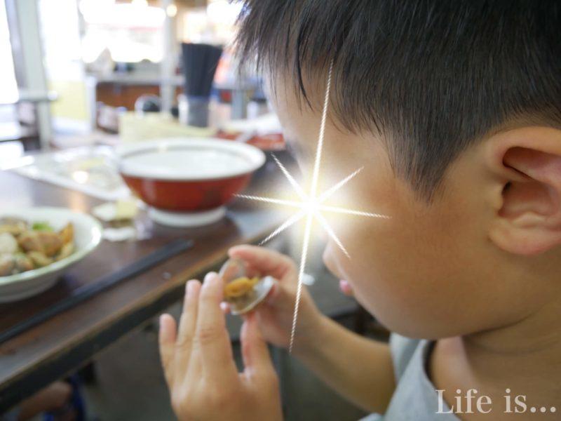 貝を食べる子ども